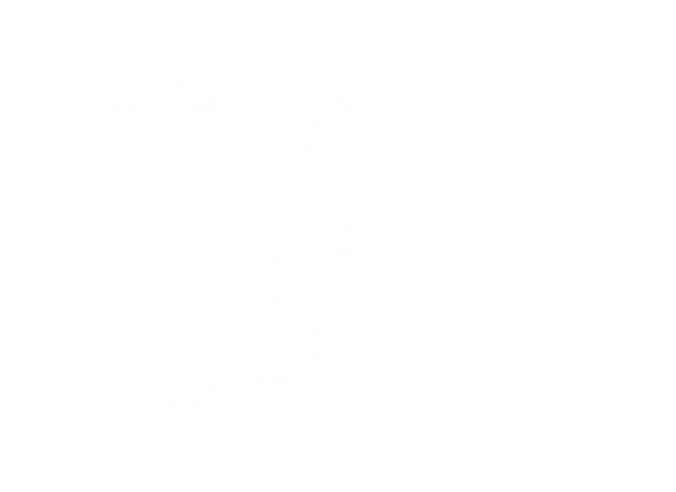 Logo blanc - Danielle Ouellet Conseil